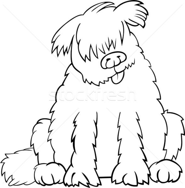 Nowa fundlandia psa cartoon kolorowanka ilustracja funny Zdjęcia stock © izakowski