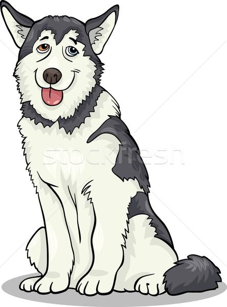 husky or malamute dog cartoon illustration Stock photo © izakowski