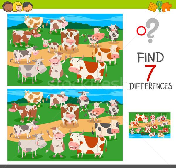 Vinden verschillen spel koeien dier Stockfoto © izakowski