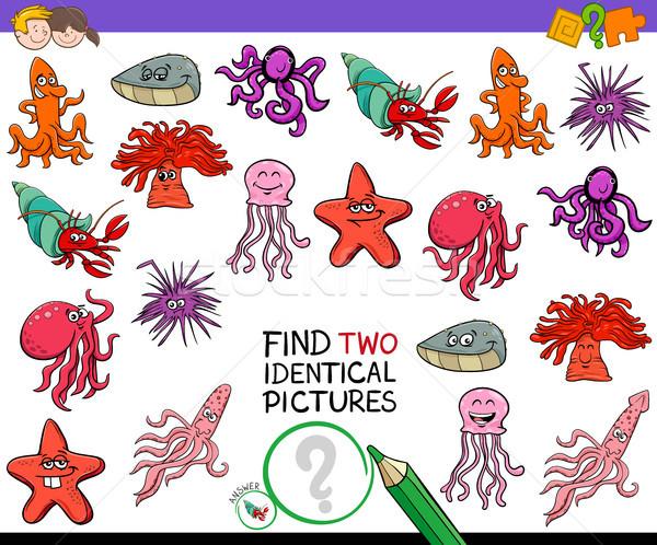 Encontrar dois animais jogo crianças Foto stock © izakowski