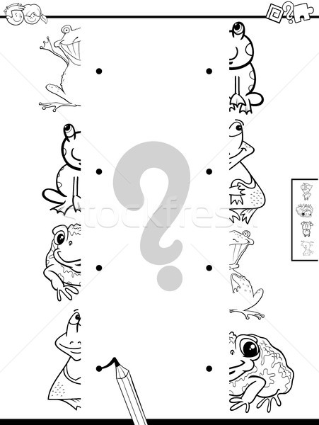 match halves of frogs game coloring book Stock photo © izakowski