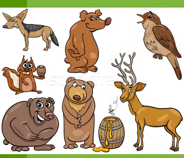 wild animals cartoon set illustration Stock photo © izakowski
