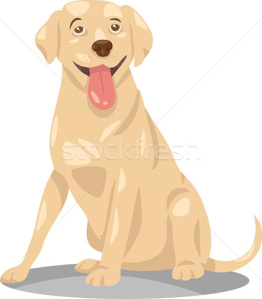 Лабрадор ретривер собака Cartoon иллюстрация смешные чистокровных собак Сток-фото © izakowski