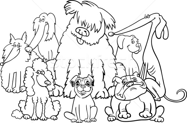 Stock photo: purebred dogs coloring book