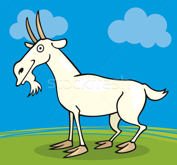 Farm animals: Goat Stock photo © izakowski