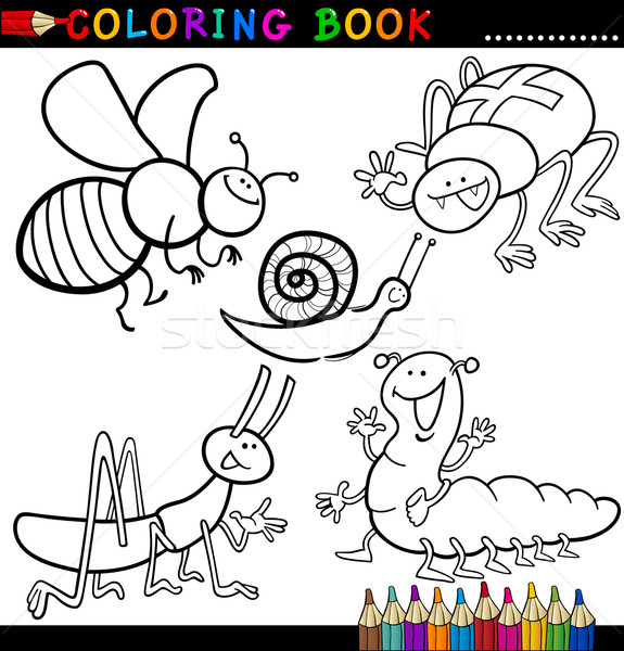 Rovarok bogarak kifestőkönyv oldal rajz illusztráció Stock fotó © izakowski