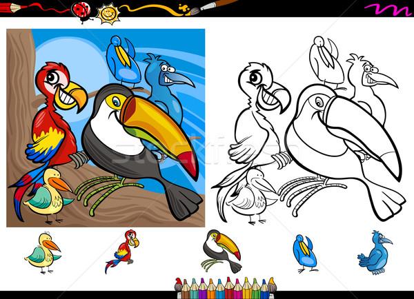 exotic birds cartoon coloring page set Stock photo © izakowski