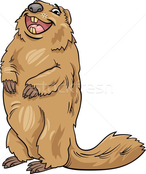 marmot animal cartoon illustration Stock photo © izakowski