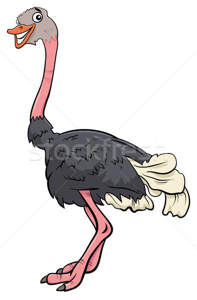 Struzzo uccello animale carattere cartoon illustrazione Foto d'archivio © izakowski