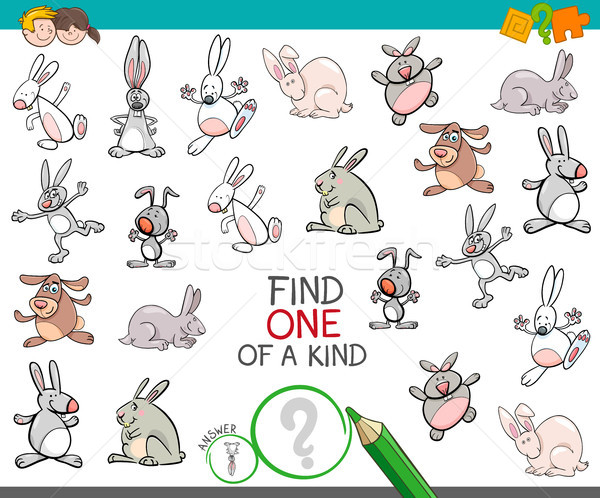 Find One Of A Kind With Rabbits Animal Characters Vector