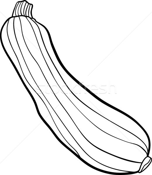 Line Drawing Zucchini : Zucchini vegetable cartoon for coloring book vector