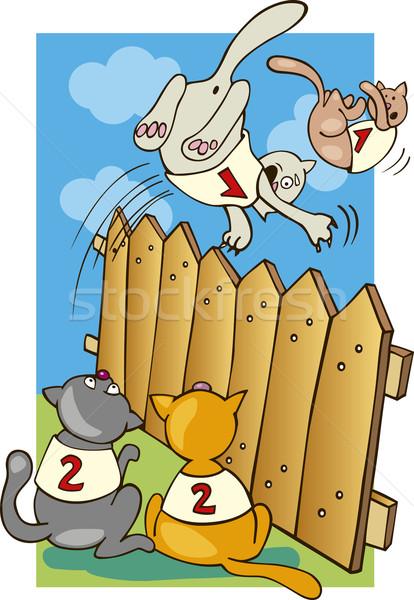 Cats jumping above the fence Stock photo © izakowski