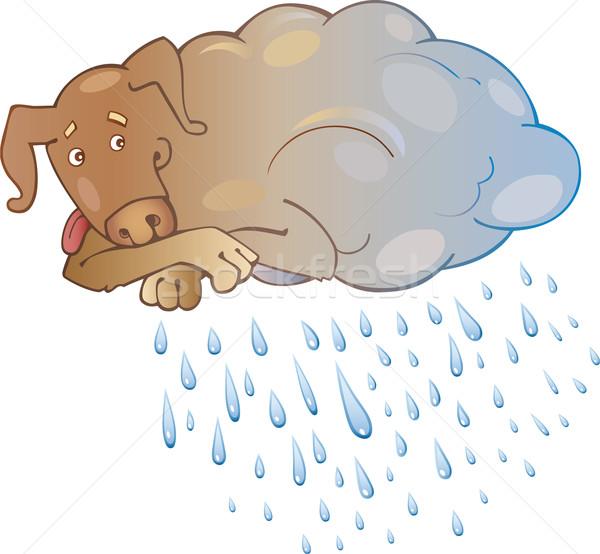 Yağmurlu köpek karikatür yağmur komik damla Stok fotoğraf © izakowski