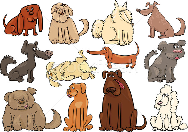Cartoon honden puppies groot ingesteld illustratie Stockfoto © izakowski