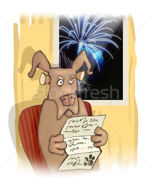 dog and fireworks Stock photo © izakowski