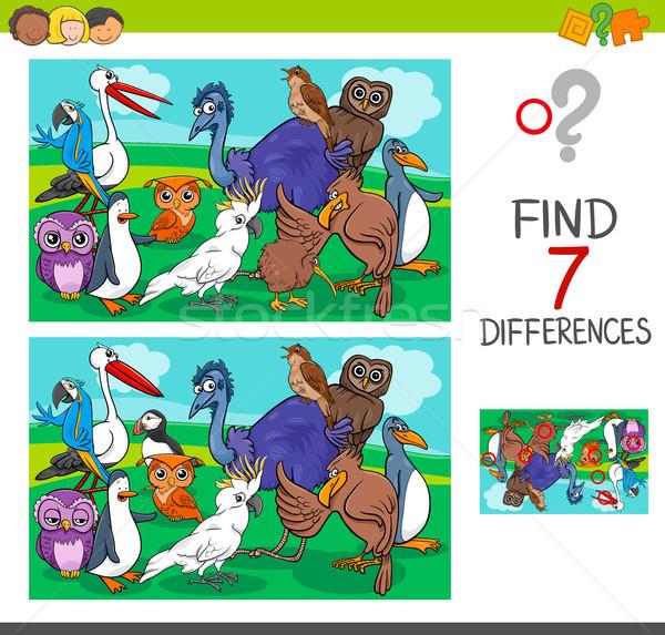 Trovare differenze gioco uccelli cartoon Foto d'archivio © izakowski
