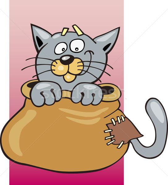 Cat in sack Stock photo © izakowski