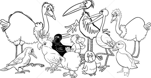 Stock foto: Vögel · Gruppe · Ausmalbuch · schwarz · weiß · Karikatur · Illustration