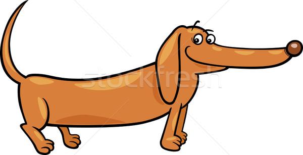 Tacskó kutya rajz illusztráció aranyos fajtiszta Stock fotó © izakowski