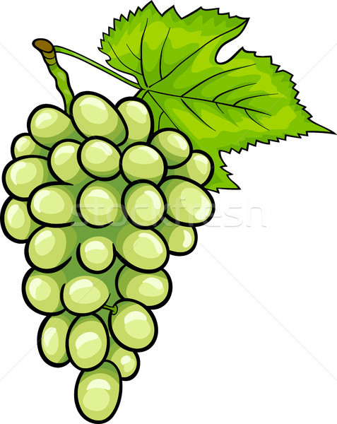 Stock Photo White Grapes Fruit Cartoon Illustration Strugure