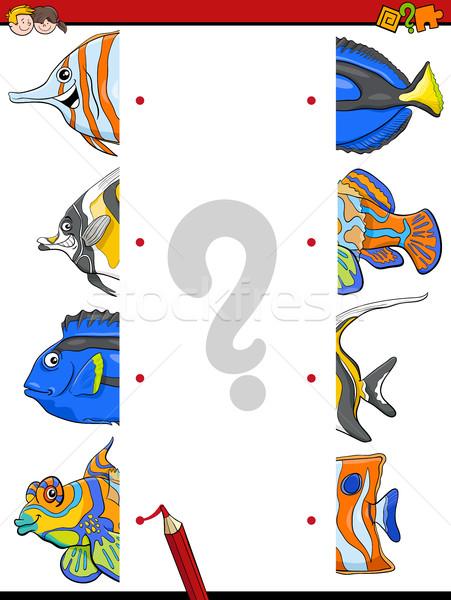 match the fish halves activity Stock photo © izakowski