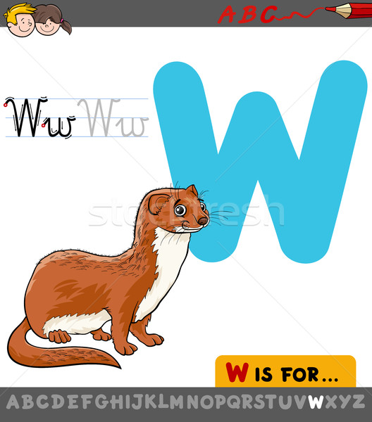 letter w with cartoon weasel Stock photo © izakowski