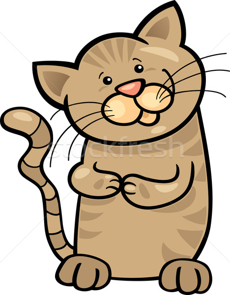 brown tabby kitten Stock photo © izakowski