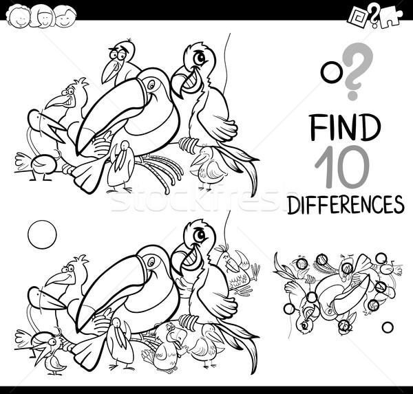 Diferença atividade aves preto e branco desenho animado ilustração Foto stock © izakowski