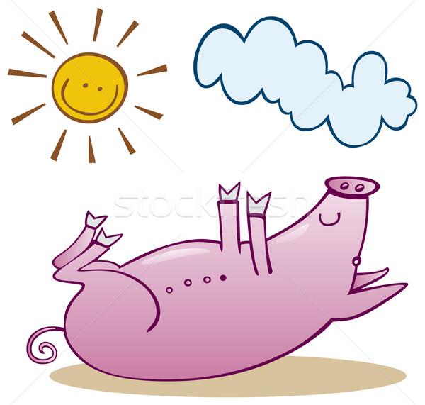 Pig take sunbath Stock photo © izakowski
