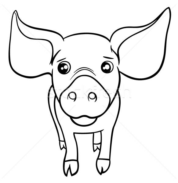 pig or piglet coloring page Stock photo © izakowski