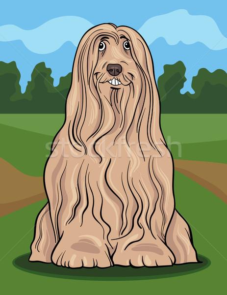 あごひげを生やした 犬 漫画 実例 かわいい 純血種の犬 ストックフォト © izakowski