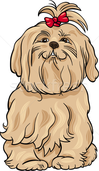 Maltese Dog Cartoon Illustration Vector Illustration C Igor