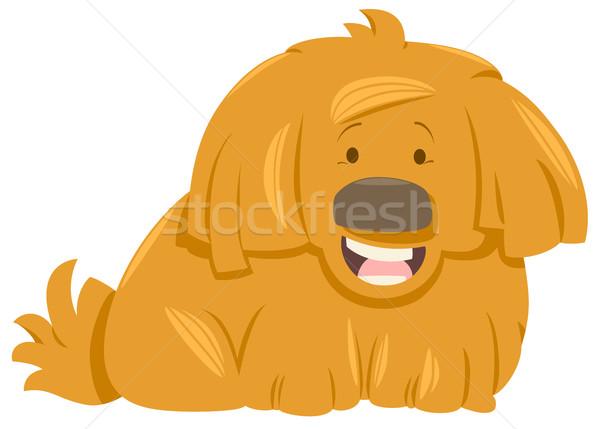 Behaard hond dier karakter cartoon illustratie Stockfoto © izakowski