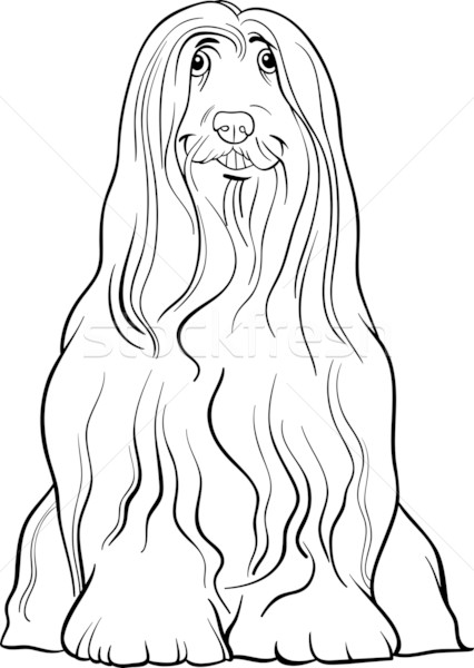 bearded collie dog cartoon for coloring Stock photo © izakowski