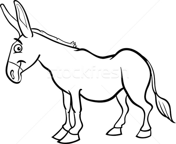 Mule Stock Vectors Illustrations And Cliparts Page 2