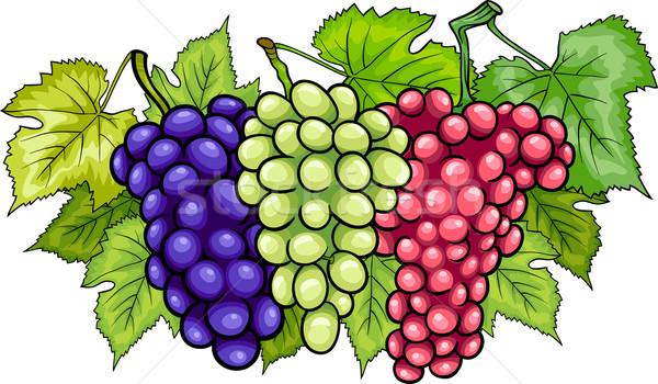 Stok fotoğraf: üzüm · karikatür · örnek · üç · beyaz · kırmızı