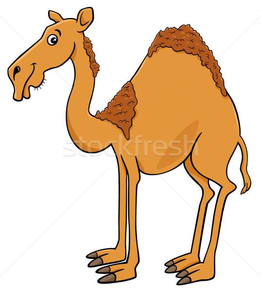 Camello carácter Cartoon ilustración animales Foto stock © izakowski