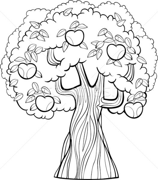 Măr Desen Animat Carte De Colorat Negru Alb