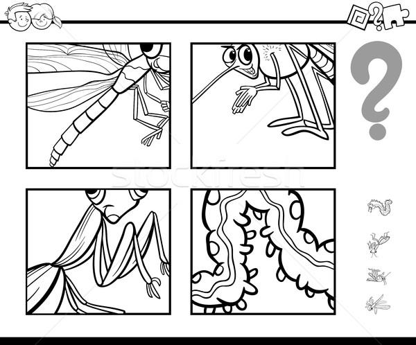 Odgadnąć owadów strona czarno białe cartoon ilustracja Zdjęcia stock © izakowski