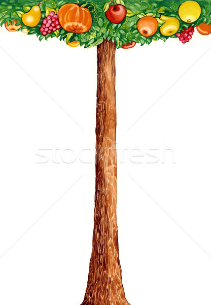 Stock fotó: Fantázia · gyümölcsfa · illusztráció · fa · különböző · gyümölcsök