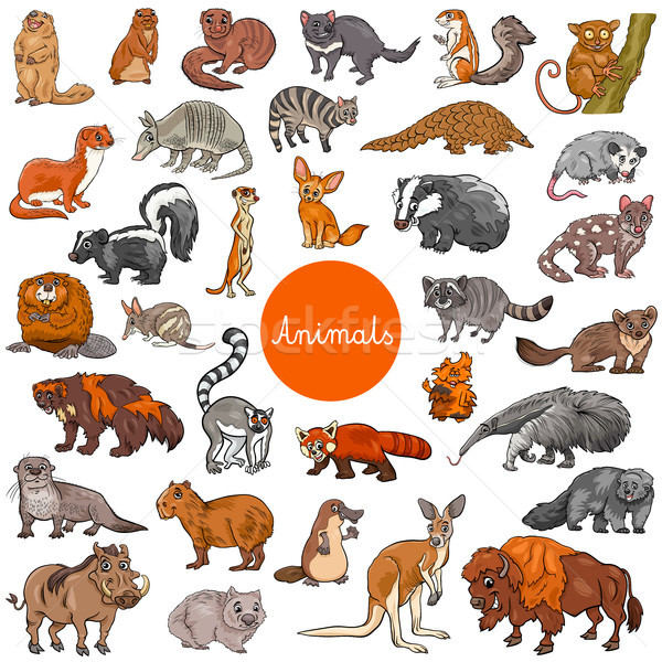 wild mammals animal characters big set Stock photo © izakowski