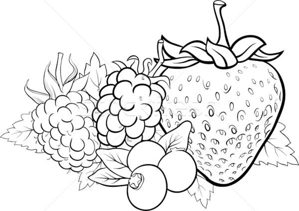 Meyve Meyve örnek Boyama Kitabı Siyah Beyaz Karikatür