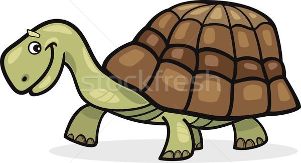 Turtle Stock photo © izakowski