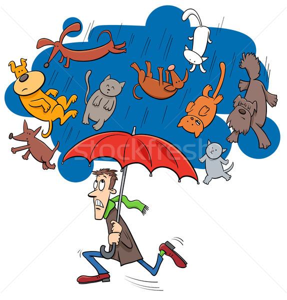 saying raining cats and dogs cartoon illustration Stock photo © izakowski