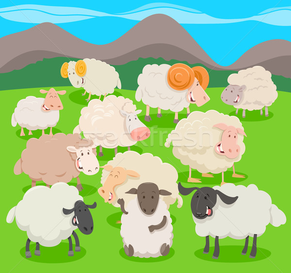 ストックフォト: 群れ · 羊 · 漫画 · 実例 · 家畜