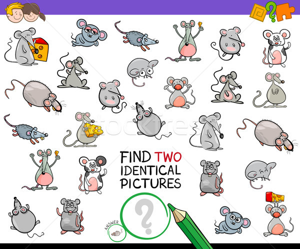 find two identical mice educational activity Stock photo © izakowski