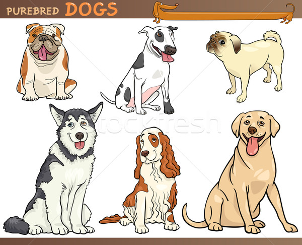 purebred dogs cartoon illustration set Stock photo © izakowski