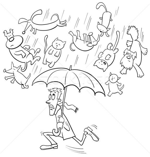 raining cats and dogs cartoon illustration Stock photo © izakowski