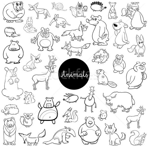 cartoon wild animal characters set color book Stock photo © izakowski
