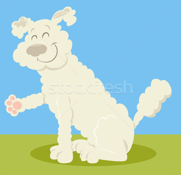 Blanche caniche chien cartoon illustration animaux Photo stock © izakowski